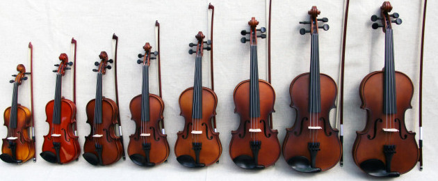 Different kinds of violins that we would be learning at Violin Instinct